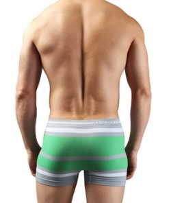 Boxer Briefs Seamless Shorts Green for Men Underwear Stretchable Drawers Free Size